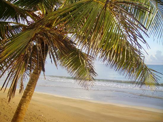 Hotel Yunque Mar: Yunque mar