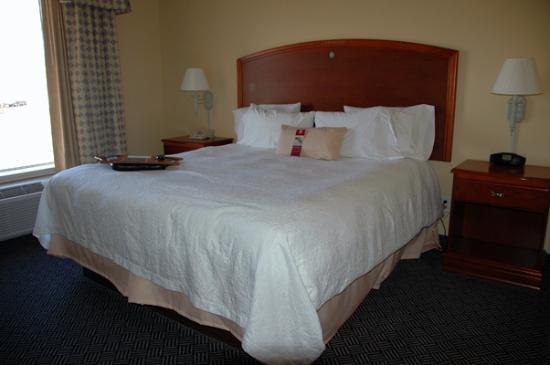 هامتون إن لاجون: King-size bed in the room