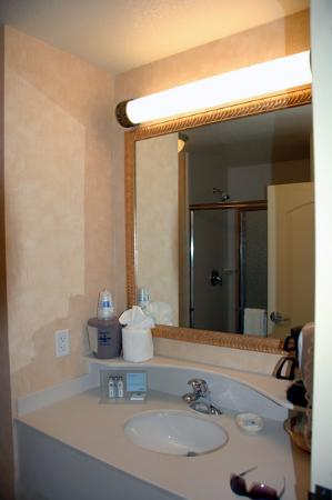 Hampton Inn Logan: Vanity and sink