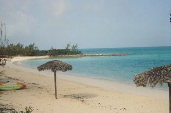 Sammy T's Beach Resort: Sammy's Beach.