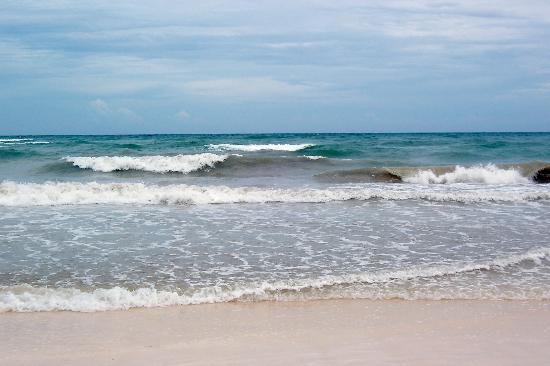 Zulum Beach Club + Cabanas: Tulum beach after hurricane