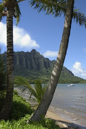 Kaneohe, Hawaï: Windward Oahu