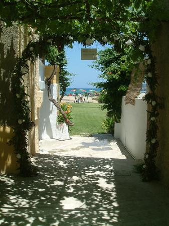 Ismini Apartments: gardenview