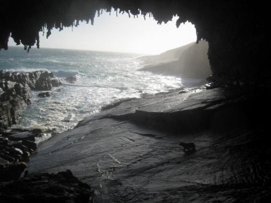 Mercure Kangaroo Island Lodge: One of the kangaroo Island wonders: Admiral Arch.