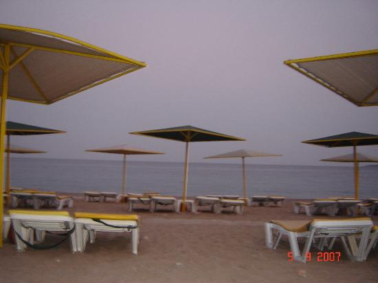 Euphoria Tekirova Hotel: The beach