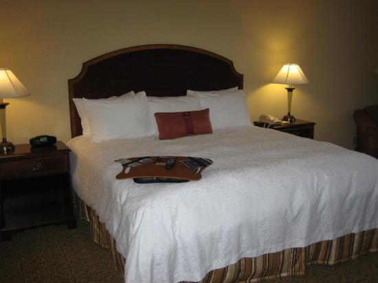 Hampton Inn Vicksburg: King size bed