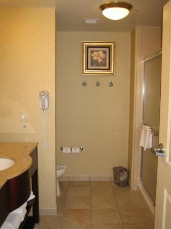 Hampton Inn Vicksburg: Bathroom