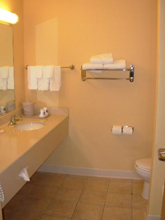 Fairfield Inn & Suites Anchorage Midtown: Bathroom