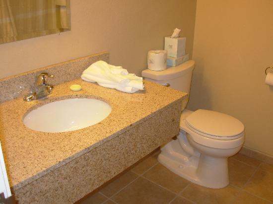 La Quinta Inn & Suites : Standard Room - Bathroom