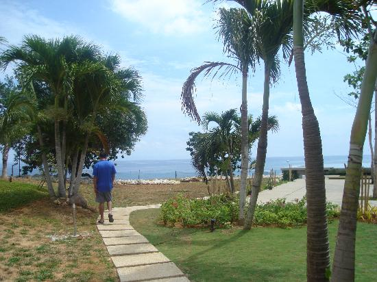 Amorita Resort: Pathway leading to the pool and down the beach