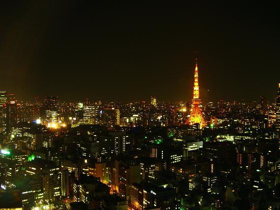 พาร์ค โฮเต็ล โตเกียว: The view from our room