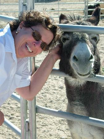 Stagecoach Hotel and Casino: Me and the Burro - Longstreet Casino