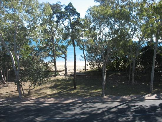 Shelly Bay Resort: Looking across the road to the Beach