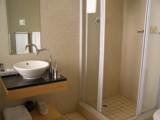 Hippo Boutique Hotel: Modern bathroom