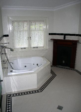 Whispering Pines Chalet: the bath and fire in the charles darwin bathroom