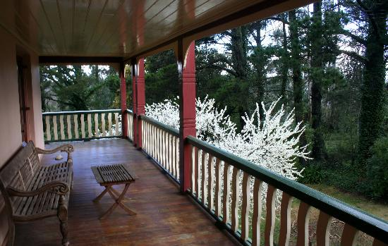 Whispering Pines Chalet: the private balcony of the charles darwin suite