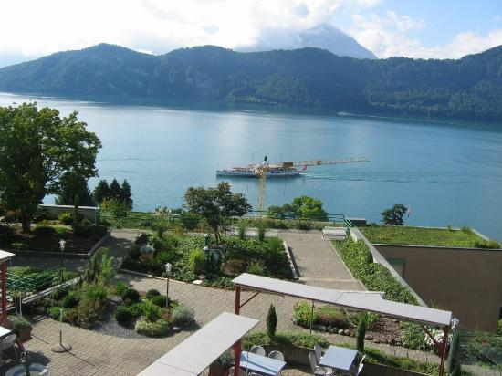 Weggis, Swiss: Just one of the views!