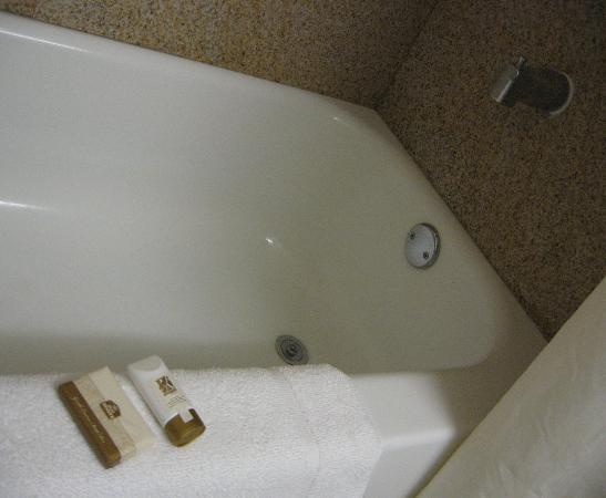 Best Western North East Inn: Best Western Inn (bath tub)