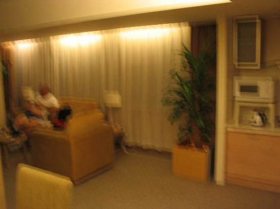 Xian Skytel Hotel: Living room