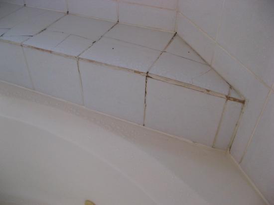Econo Lodge Surrey : Dirty bathroom