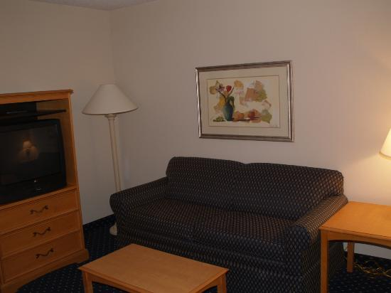 Holiday Inn Express Hotel & Suites Richmond North Ashland: Sitting area as you enter suite.