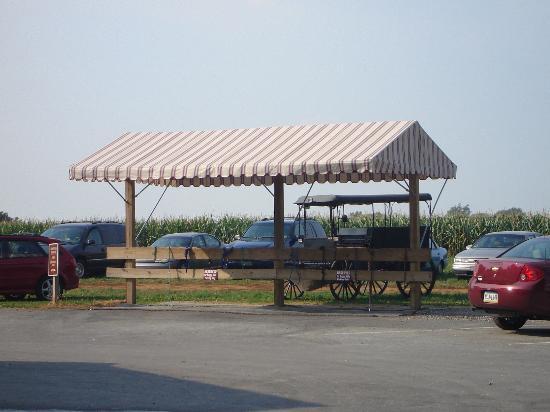Kitchen Kettle Village : Buggy parking at Kitchen Kettle
