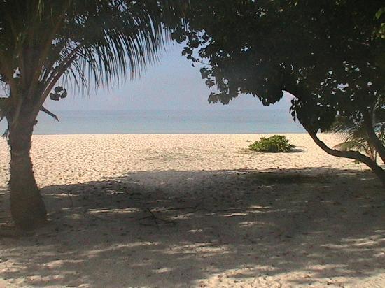 Kuredu Island Resort & Spa: the beach from our villa