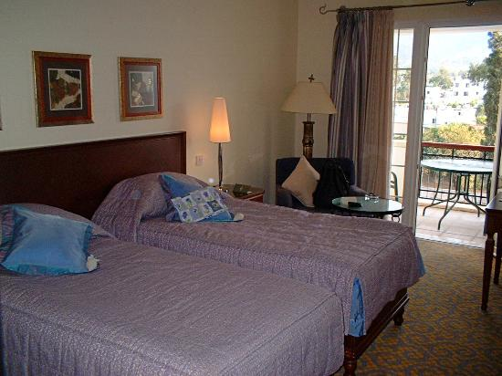 The Arkin Colony Hotel: Typical room