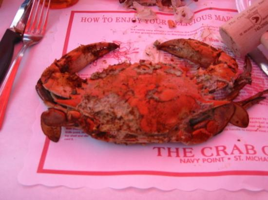 Lazy Jack Inn on Dogwood Harbor: The Crab Claw