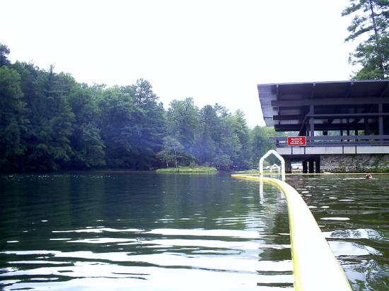 Vogel State Park Campground: Swimming Area