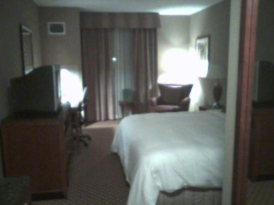 Hilton Garden Inn Tampa Northwest / Oldsmar : HGI Oldsmar - King Room