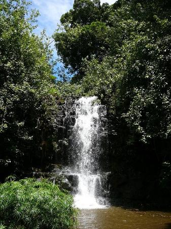 Huleia National Wildlife Refuge: Our own private waterfall