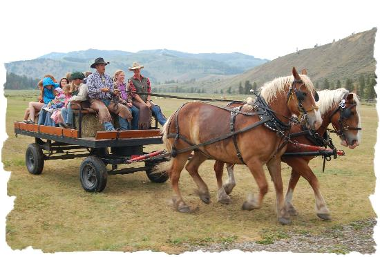 Nine Quarter Circle Ranch: Hayride