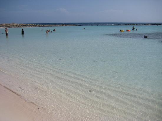 Aruba Beach Villas: Baby Beach!