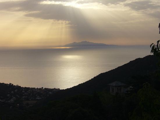 San-Martino-di-Lota, França: Vue d'un chemin en amont de San Martino Di Lota