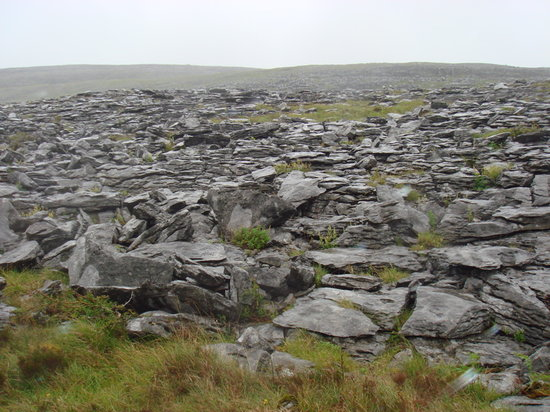 The Burren, Ireland: Burren Walking Tour
