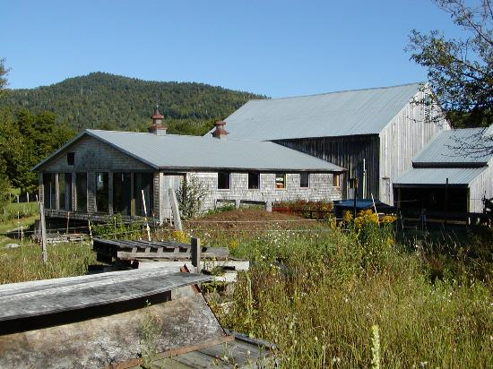 Windy Hill Bed & Breakfast: White Mountain serenity at Windy Hill