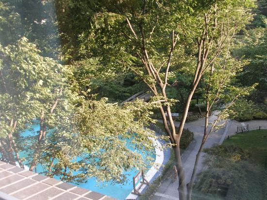 Grand Prince Hotel Takanawa : view of the pool
