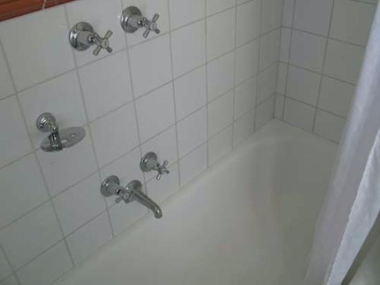 Birches Serviced Apartments: Shower