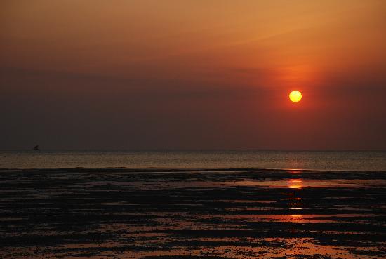 Salome's Garden : Zanzibar Sunset