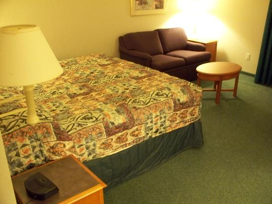 La Quinta Inn & Suites Austin Mopac North: Big Bed!  Comfy Couch!