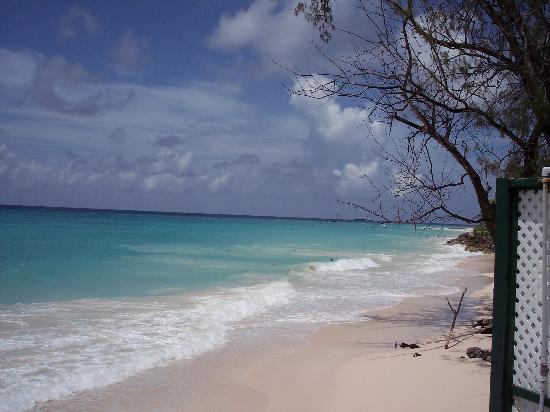 Barbados Beach Club: beautiful white sandy beach
