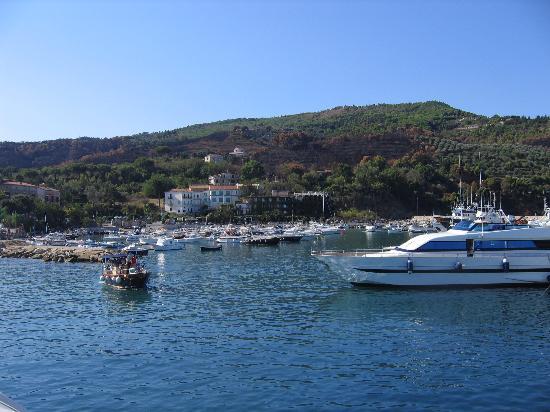 Castellabate, إيطاليا: San Marco Port, the port closest to Castellabate and Santa Maria di Castellabate