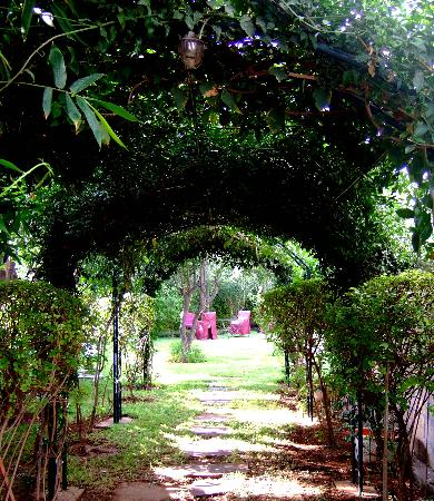 The Leafy Bower To The Moroccan Garden Picture Of Jnane