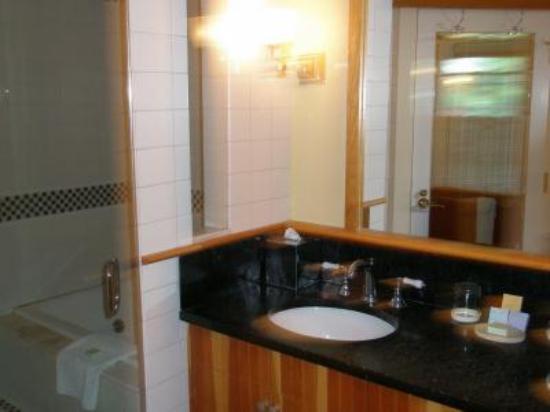 Pitcher Inn: School room bath