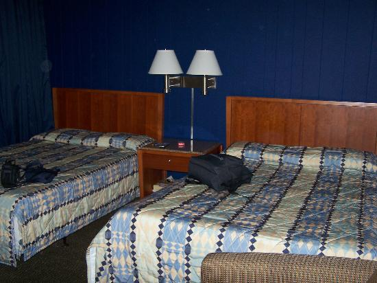 Oasis Inn: lits