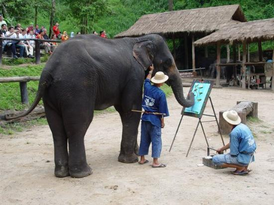 TaNiTa (Riverside) Resort: excellent elephent painting