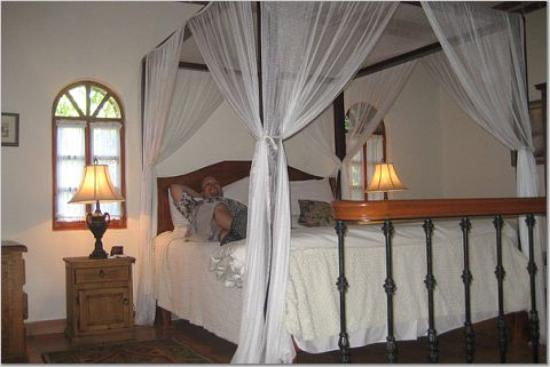 Todos Santos Inn : The comfy bed