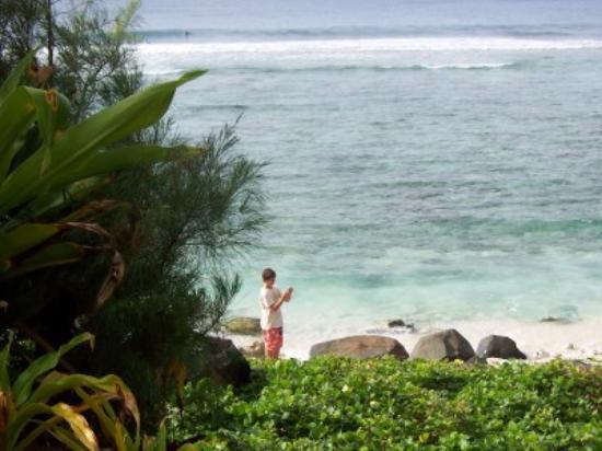 Kiikii Inn & Suites: Ocean view