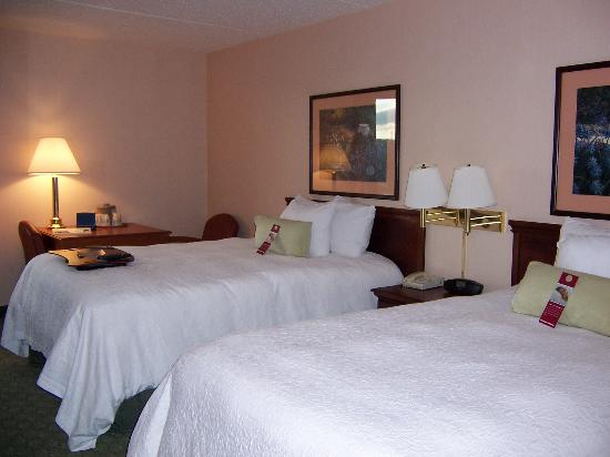 Hampton Inn Philadelphia/Great Valley/Malvern: beds